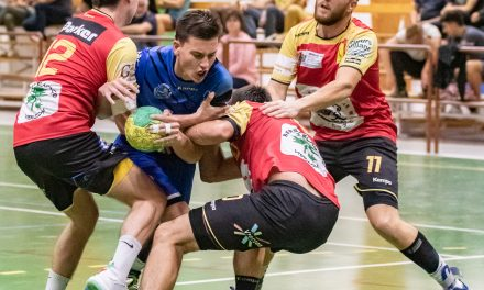 Photos – Seniors 2 contre Vierzon