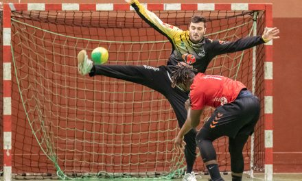 Photos – Seniors 1 contre Niort